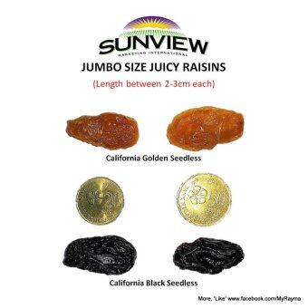 SunView Raisins Made with Seedless Medley Grapes 425g (Twin Pack)