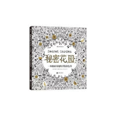 Secret Garden An Inky Treasure Hunt And Coloring Book Chinese