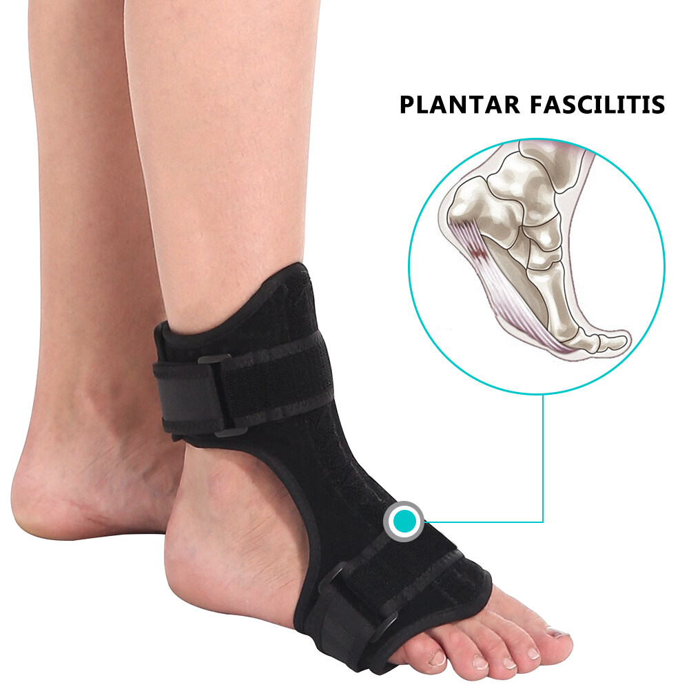 2206368642b3 Step 3: Center wide portion of foot strap under ball of foot. Attach  fastener on wider end of foot strap to top of support. Pull toes up, wrap  remaining ...